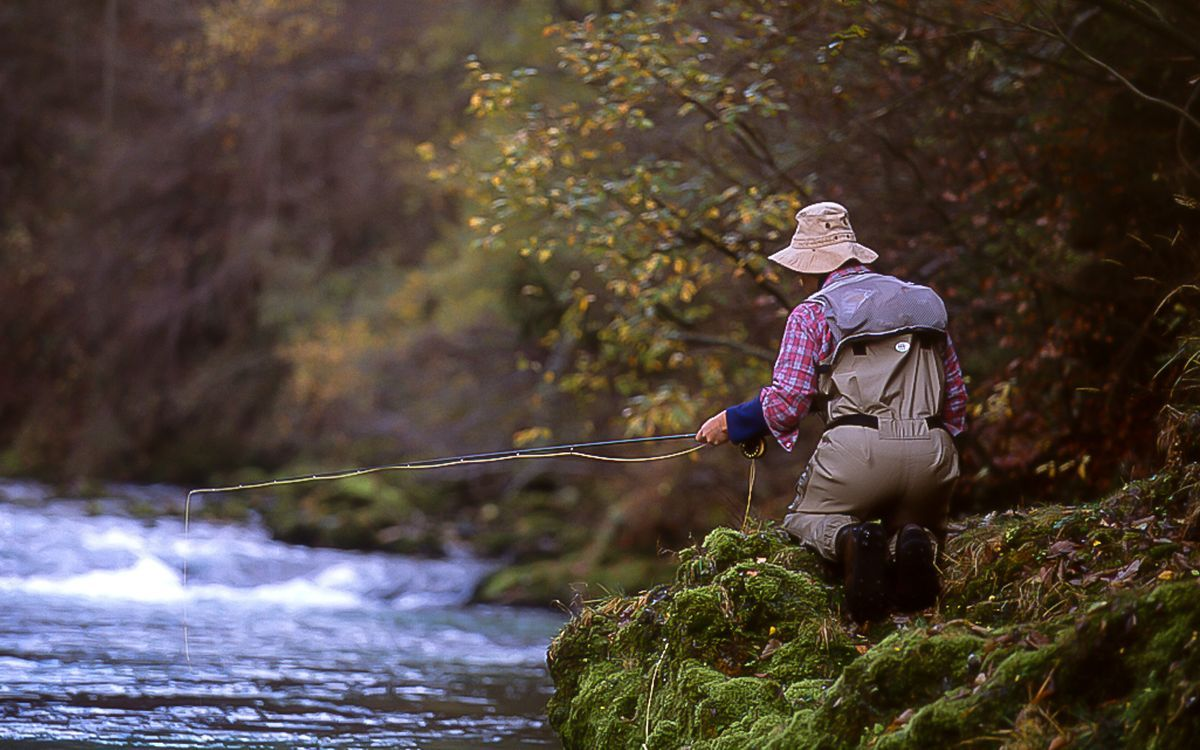 fly fishing in Slovenia (4).jpg