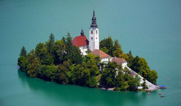 Brown Algae Warning at Lake Bled