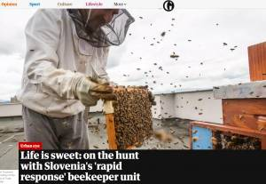 Slovenian Beekeeping Culture Featured in 'The Guardian'