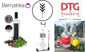 A Guide to Slovenian Gin, Part One: Berryshka, Brin Gin, Dry Tergeste Gin (DTG)