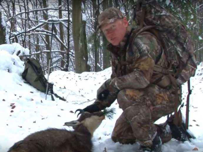 Hunting an Ageing Pursuit in Slovenia, and Killing a Bear Costs Between €600 and 6,500 (Feature)
